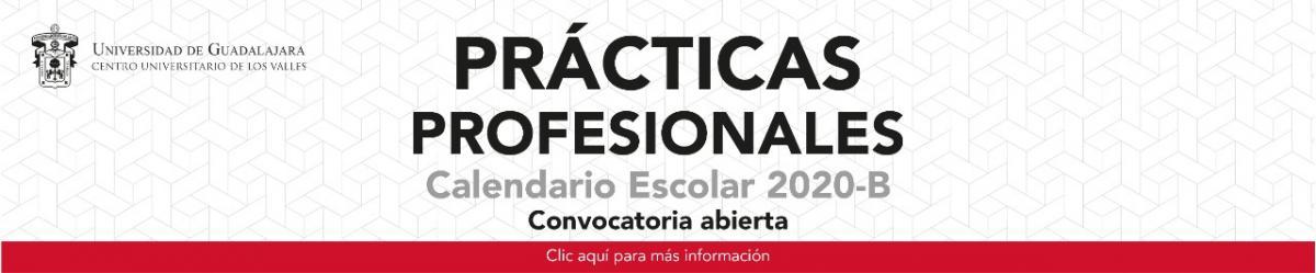 Prácticas Profesionales 2020 - B