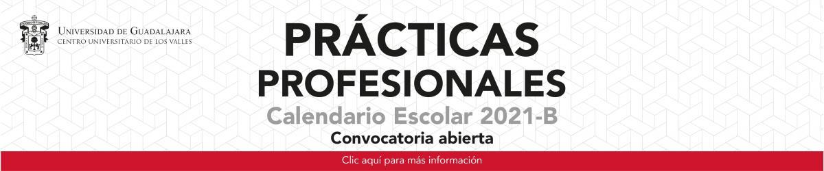 Prácticas Profesionales 2021 - B