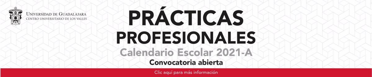 Convocatoria de Prácticas Profesionales, Calendario 2021-A