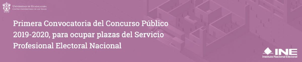 1er Convocatoria del Concurso Público 2019-2020 INE