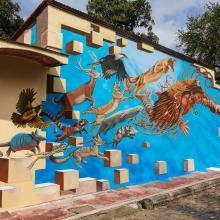 Mural de especies de la región
